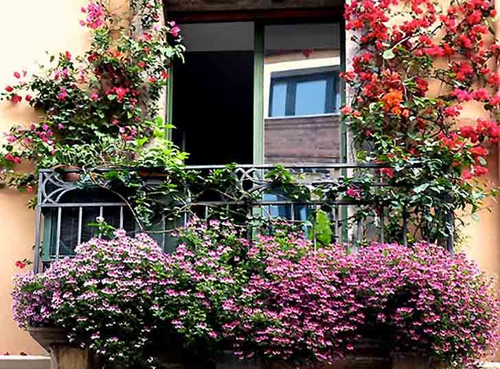 Euroflora, un concorso per i balconi fioriti a Genova