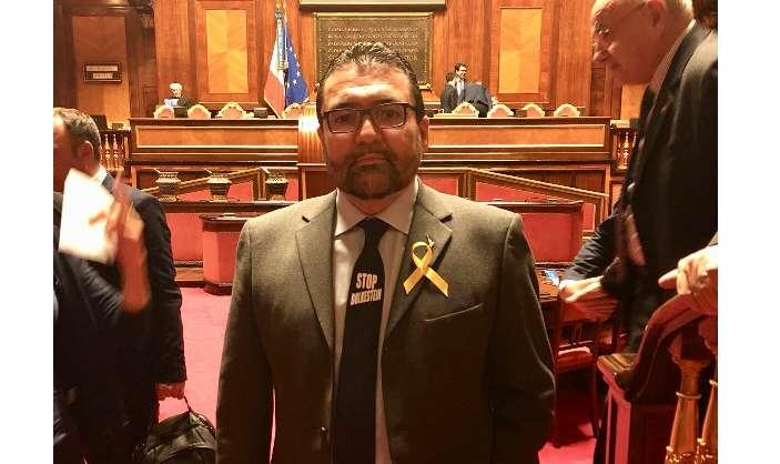 Buonsenso non solo ruspa in senato anche con la cravatta for Lavori senato oggi