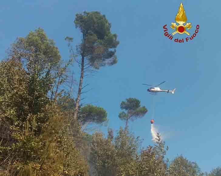 Incendio boschivo in zona Madonna di Montenero, case evacuate