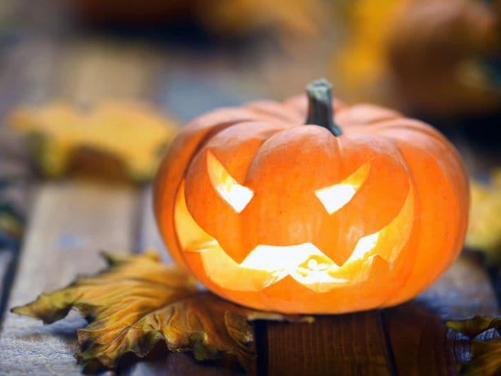 Zucca Di Halloween Piu Grande Del Mondo.Halloween In Casa Con Le Zucche Made In Liguria Liguria Notizie