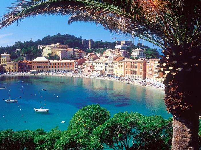 Nuove alberature a Sestri Levante