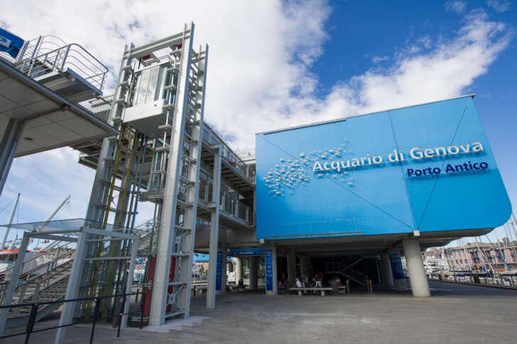 All'Acquario di Genova nuovo orario