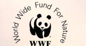 WWF, 39 Milioni di nuovi posti di lavoro
