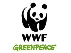 Greenpeace, Legambiente e WWF Italia