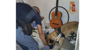 Spacciatori a domicilio: arrestati albanese e genovese