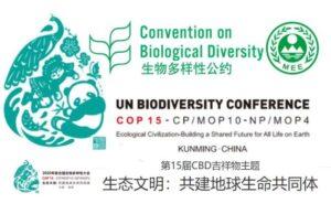 COP15 Dichiarazione di Kunming e WWF