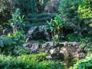 I Giardini di Villa della Pergola, ultima settimana